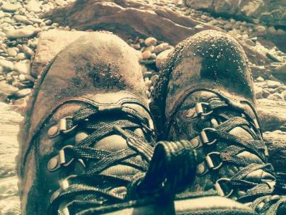A walkers shoes
